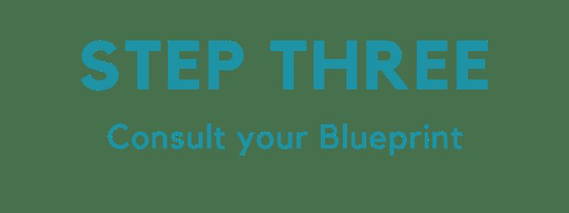 STEP THREE CHECK THE BLUEPRINT